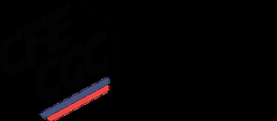 CFE-CGC Union Départementale 06 Logo